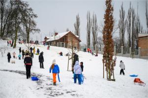 Zima w Parku Strzeleckim