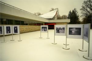 Fotoferia International Exhibition 2020