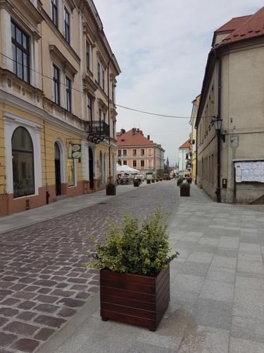 Remont ulicy Katedralnej